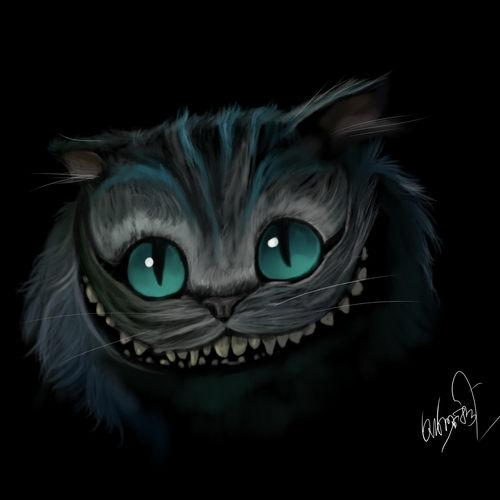 Cat by arko