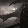 generic dragon shit by afigini