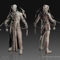 venal anatomica - sculpt by calebnefzen