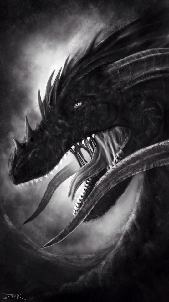 dragon by zeek