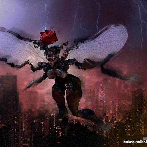 Fairy by dariosplendido