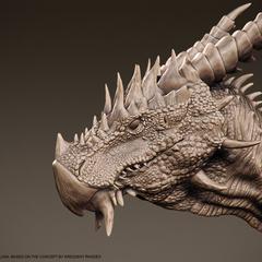 dragon by ricardoorellana