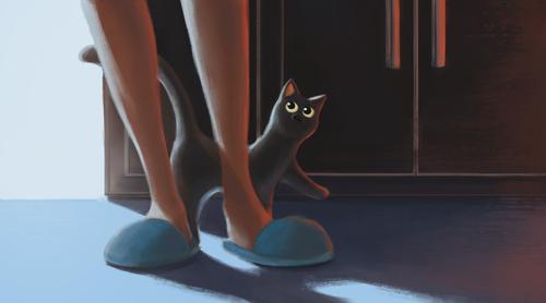Display jumbo cat 01