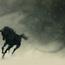 shadow horse by kashivan