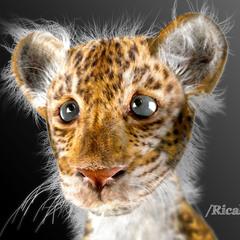 baby leopard by ricaldeart