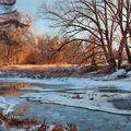 winter swamps by takashmen