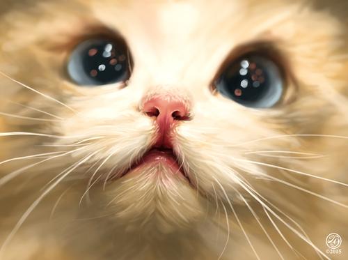 Display jumbo catherine steuer cute cat study