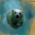 polarbear by fernandoissamo