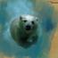 Thumb polarbear
