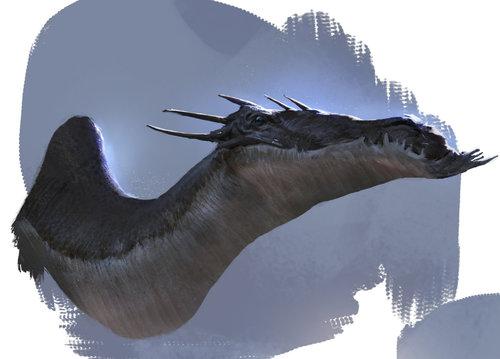 Display jumbo dragons 2