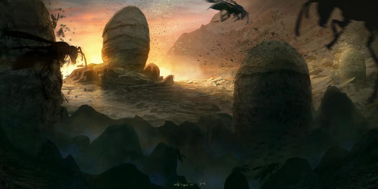 mountan wasps nest by orjansvendsen