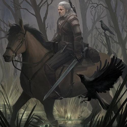 The Witcher Art Contest by douglasderi