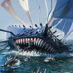 sailbeast by boac