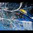 space vegas 4 by boac