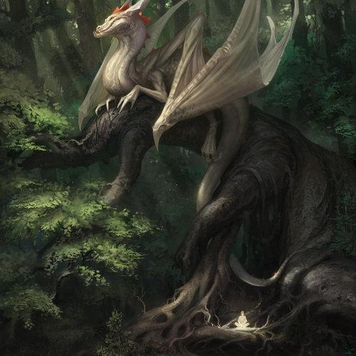 Dragon by reiko