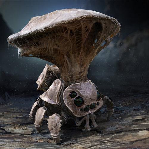 Spider Shroom by reiko