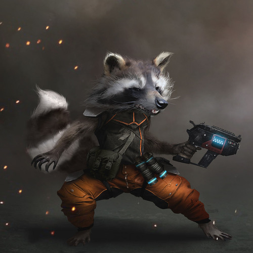 Rocket Raccoon by jensfiedler
