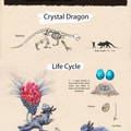 crystal dragon by meat