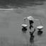 running from the rain by kashivan
