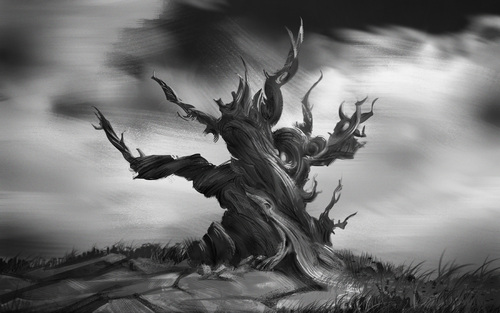 Wise Old Tree by Ivan Kashubo
