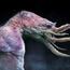 brainstorm challenge 4 bat-squid by soren